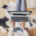 العمل الحر - العمل كمستقل